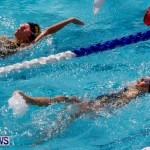 Sharks Sprint Swim Meet Bermuda, October 19, 2013-25