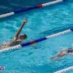 Sharks Sprint Swim Meet Bermuda, October 19, 2013-27