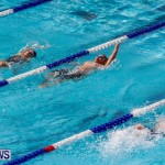 Sharks Sprint Swim Meet Bermuda, October 19, 2013-28