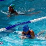 Sharks Sprint Swim Meet Bermuda, October 19, 2013-3