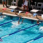 Sharks Sprint Swim Meet Bermuda, October 19, 2013-38