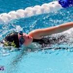 Sharks Sprint Swim Meet Bermuda, October 19, 2013-39