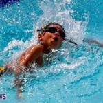 Sharks Sprint Swim Meet Bermuda, October 19, 2013-43