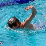 Sharks Sprint Swim Meet Bermuda, October 19, 2013-47