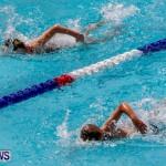Sharks Sprint Swim Meet Bermuda, October 19, 2013-48