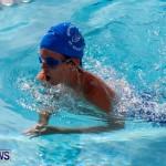Sharks Sprint Swim Meet Bermuda, October 19, 2013-5