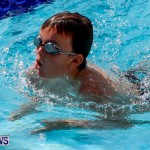 Sharks Sprint Swim Meet Bermuda, October 19, 2013-6