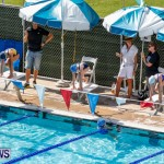 Sharks Sprint Swim Meet Bermuda, October 19, 2013-62