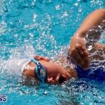 Sharks Sprint Swim Meet Bermuda, October 19, 2013-66