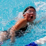 Sharks Sprint Swim Meet Bermuda, October 19, 2013-67