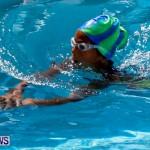 Sharks Sprint Swim Meet Bermuda, October 19, 2013-7