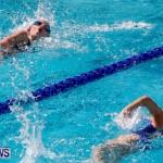 Sharks Sprint Swim Meet Bermuda, October 19, 2013-70