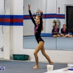 Bermuda Gymnastics, November 16 2013-12