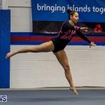 Bermuda Gymnastics, November 16 2013-17