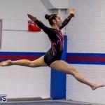 Bermuda Gymnastics, November 16 2013-18