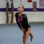 Bermuda Gymnastics, November 16 2013-21
