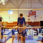 Bermuda Gymnastics, November 16 2013-23