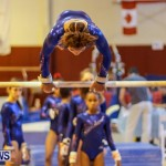 Bermuda Gymnastics, November 16 2013-24