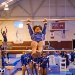 Bermuda Gymnastics, November 16 2013-25