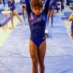 Bermuda Gymnastics, November 16 2013-26