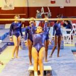 Bermuda Gymnastics, November 16 2013-33