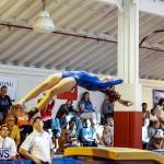 Bermuda Gymnastics, November 16 2013-65
