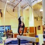 Bermuda Gymnastics, November 16 2013-69