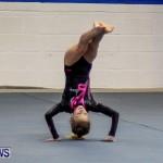 Bermuda Gymnastics, November 16 2013-7