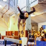 Bermuda Gymnastics, November 16 2013-71