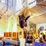 Bermuda Gymnastics, November 16 2013-72