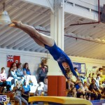 Bermuda Gymnastics, November 16 2013-75