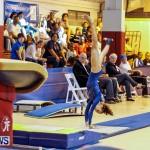 Bermuda Gymnastics, November 16 2013-78