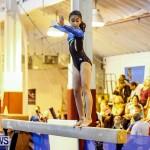 Bermuda Gymnastics, November 16 2013-79