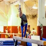 Bermuda Gymnastics, November 16 2013-82