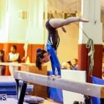 Bermuda Gymnastics, November 16 2013-85