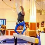 Bermuda Gymnastics, November 16 2013-86
