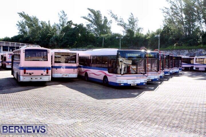 bermuda bus generic vehicle 212 (2)
