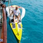 Aleksander Olek Doba Spirit of Bermuda Olo, March 23 2014-13
