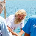 Aleksander Olek Doba Spirit of Bermuda Olo, March 23 2014-17