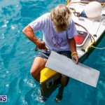 Aleksander Olek Doba Spirit of Bermuda Olo, March 23 2014-19