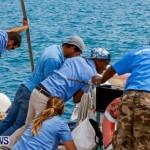 Aleksander Olek Doba Spirit of Bermuda Olo, March 23 2014-31