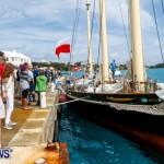 Aleksander Olek Doba Spirit of Bermuda Olo, March 23 2014-60