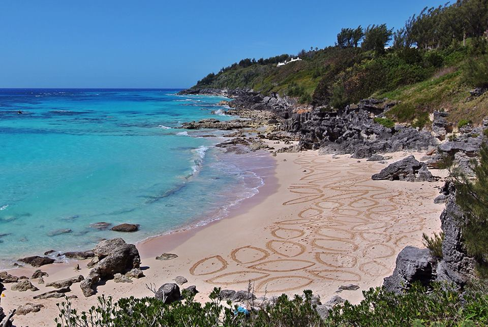 Bermuda Beach Art 2014 Salient Sands (Earl & Susan) - Participant - Adult Category