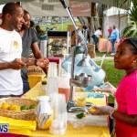 City of Hamilton Food Festival Bermuda, March 23 2014-6