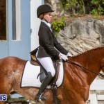 FEI Dressage Show Bermuda, March 5 2014-11