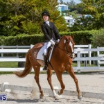 FEI Dressage Show Bermuda, March 5 2014-13