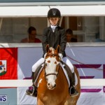 FEI Dressage Show Bermuda, March 5 2014-17