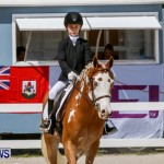 FEI Dressage Show Bermuda, March 5 2014-18