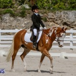 FEI Dressage Show Bermuda, March 5 2014-22