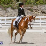 FEI Dressage Show Bermuda, March 5 2014-26